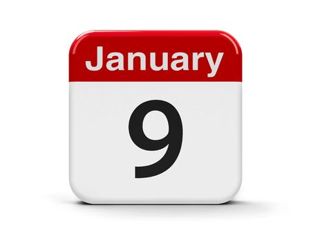 ninth: Calendar web button - The Ninth of January, three-dimensional rendering, 3D illustration Stock Photo