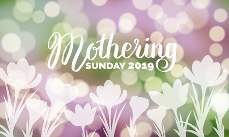 Mothering Sunday 2019 typography on bokeh background with crocus flowers vector illustration. Hand-lettering in purple and green colors. For banner, flyer, poster, web illustration, greeting card.
