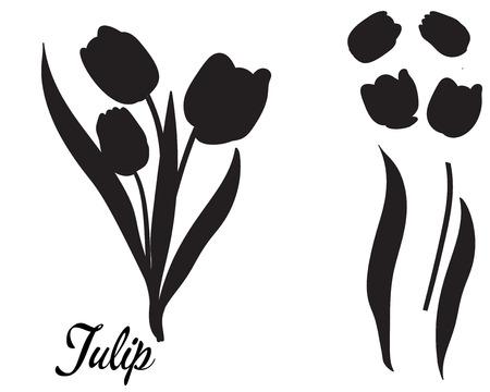 Siluetta del fiore del tulipano. Mazzo di tulipani. Foglie e capolino di un fiore isolato, in un unico colore nero. Adatto per l'arredamento, modello di taglio.