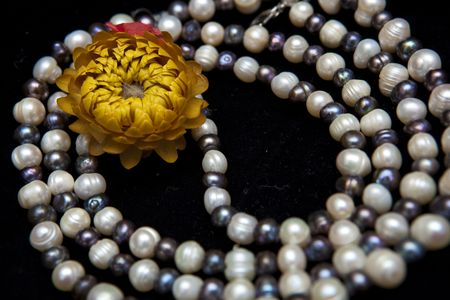 Pearl necklace and flower isolated on black background photo