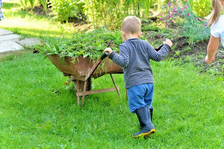 family gardening: Boy helping to clean vegetable garden Stock Photo