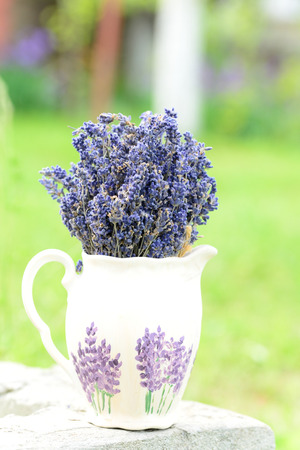 relieve: Lavender, the health benefits of lavender essential oil include its ability to eliminate nervous tension, relieve pain, disinfect the scalp and skin and treat respiratory problems. Stock Photo