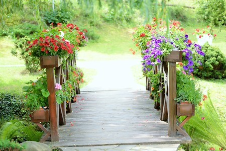 Bridge over creek filled with flowers