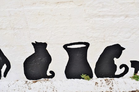 tidbit: Greek cats painted on the wall of a fence. The feline friends are all over Greece just waiting to snap up a tid-bit under the taverna table or find a shady spot to snooze all day...its a cats life... Stock Photo