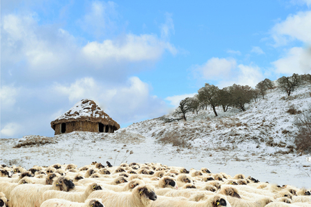 adobe wall: An abandoned house built of clay and straw, winter on a hill