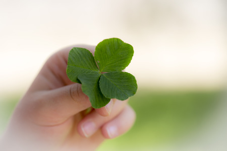 according: The four-leaf clover is a rare variation of the common three-leaf clover. According to tradition, such clovers bring good luck. Each leaf is believed to represent something: faith, hope, love and luck