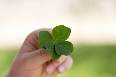 fourleaf: The four-leaf clover is a rare variation of the common three-leaf clover. According to tradition, such clovers bring good luck. Each leaf is believed to represent something: faith, hope, love and luck