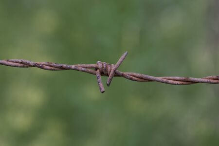 Barbed wire is a type of steel fencing wire constructed with sharp edges or points arranged at intervals along the strand Stock Photo