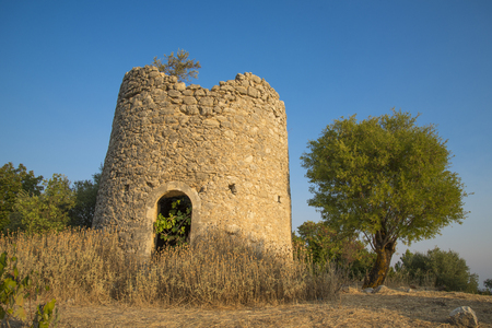 olive green: The ruin of a windmill, inside has increased one fig and on top of it an olive.