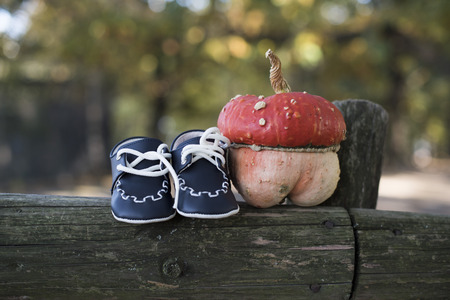 A small pumpkin and baby shoes on a fence at a maternity photosession 写真素材