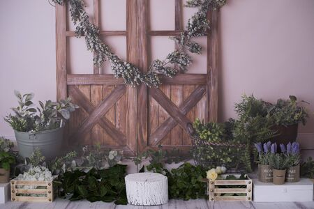 Spring / summer decor for photo shoots in the studio 写真素材