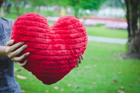 A woman hand  hold  red  heart toy . A young woman show red heart. Stock Photo