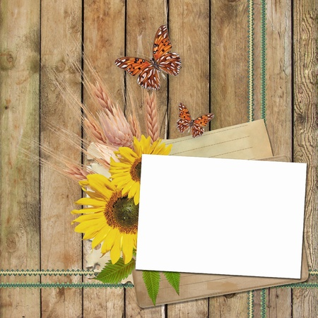Card for invitation or congratulation with  sunflowers  and butterfly photo