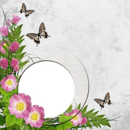 Frame for photo with roses, leaf and butterfly  photo