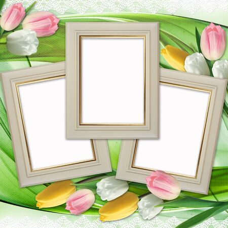 wedding photo frame: Three picture frames and tulips flowers  Stock Photo