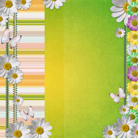 wedlock: Card for the holiday with  chamomile flowers Stock Photo