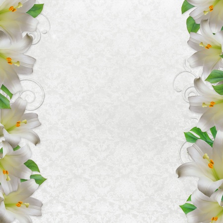 lirio blanco: Flor de lirio blanco hermoso en el fondo vintage con encaje