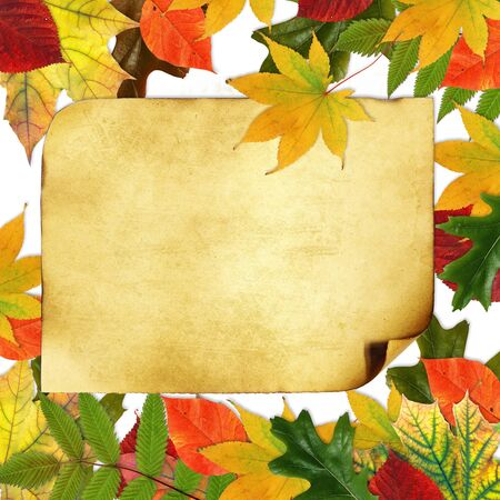 Grunge papers design in scrap booking style With the autumn leaves  photo