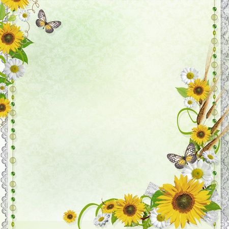 pics: Summer background with frame and flowers  Stock Photo