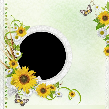 Summer background with frame and flowers  Stock Photo - 9768518