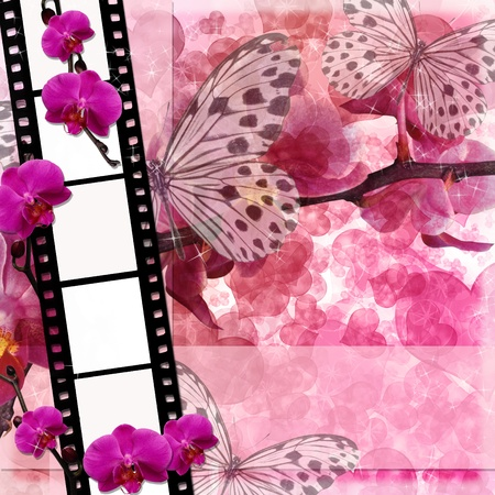 Butterflies and orchids flowers  pink background  with film frame( 1 of set) photo