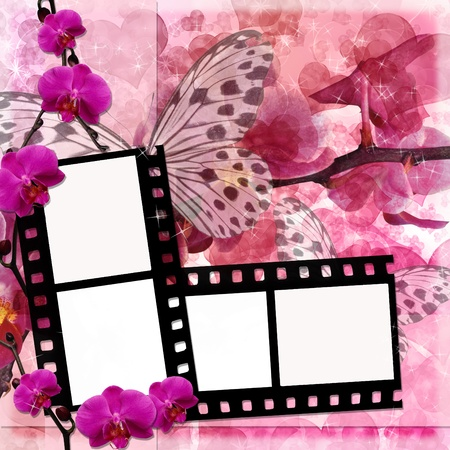 Butterflies and orchids flowers  pink background  with film frame ( 1 of set) photo
