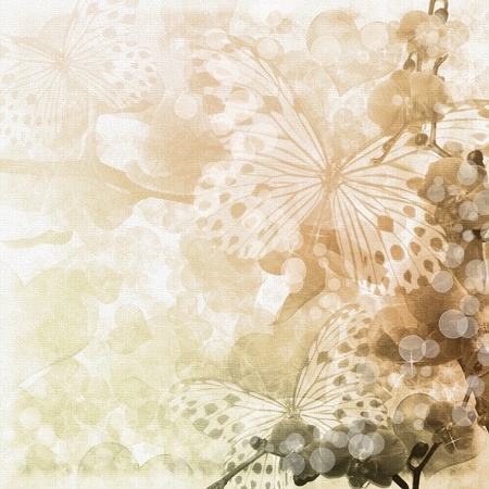 Butterflies and orchids flowers beige background ( 1 of set) photo