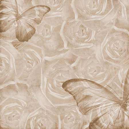 Grunge Beautiful Roses Background with butterfly ( 1 of set)  photo