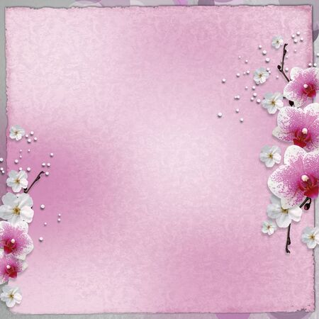 background  with pink orchids Stock Photo - 9862396