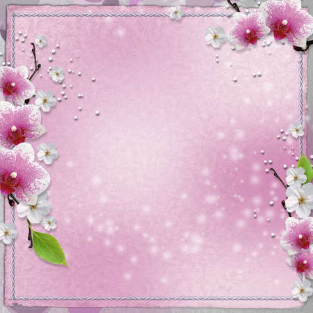 background  with pink orchids   photo
