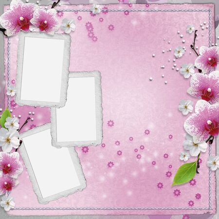 paper frames for photo with pink orchids  Stock Photo - 9862385