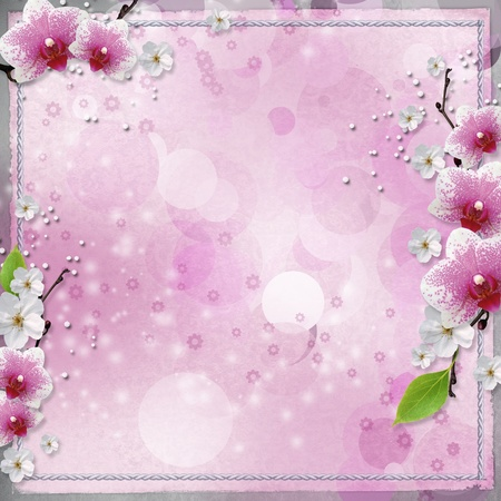 paper background  with pink orchids  photo