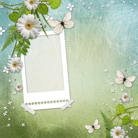 paper frame with beautiful daisy and butterfly photo