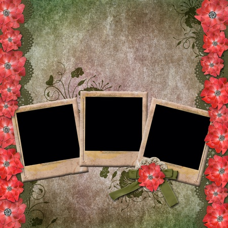 Vintage Background With Old Frames For Photos and Red Flowers  photo