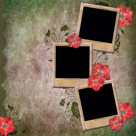 paperboard: Vintage Background With Old Frames For Photos and Red Flowers