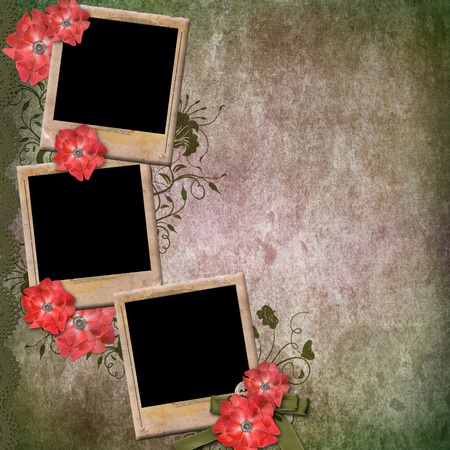 the old days: Vintage Background With Old Frames For Photos and Red Flowers