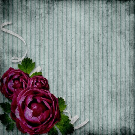 roses on the grunge striped background Stock Photo - 10017495
