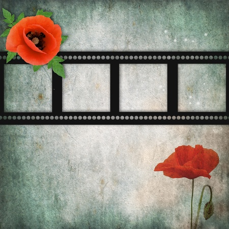 grunge poppies background with frame photo