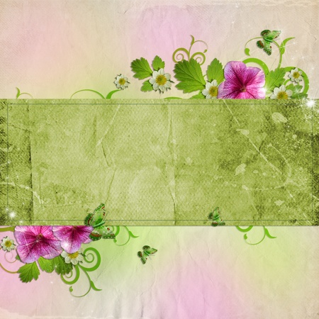 Background for congratulation card in pink and green photo