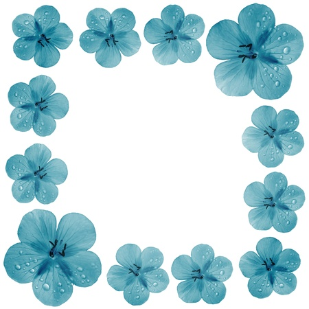 blue  flower frame with copy space