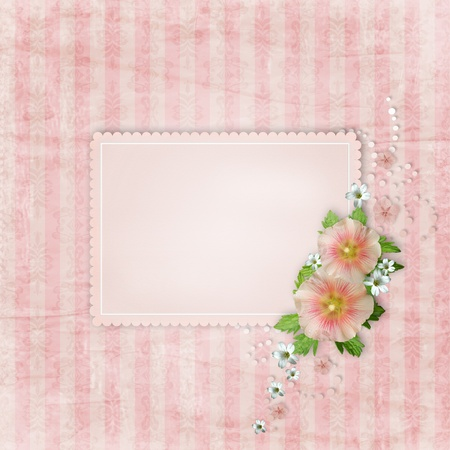 Vintage card   and pink mallow on retro striped background photo