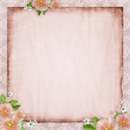 Vintage card   and pink mallow on retro  background Stock Photo - 10039353