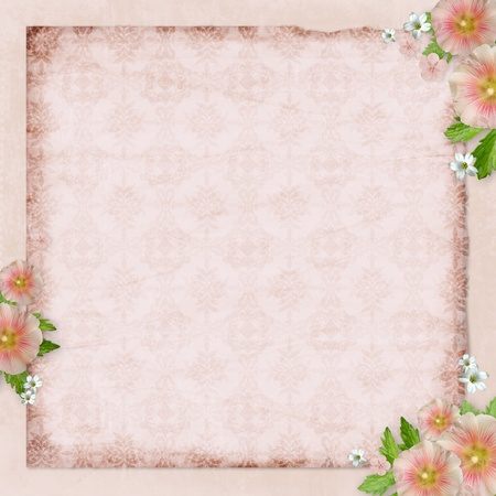 Vintage card   and pink mallow on retro  background Stock Photo - 10039352