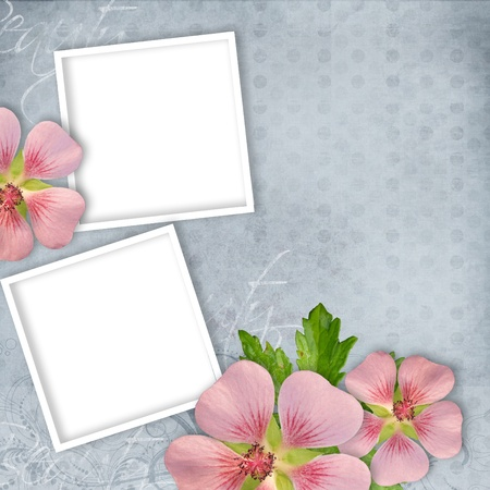 Card for invitation or congratulation with pink flowers Stock Photo
