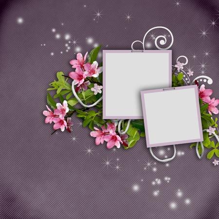 membrillo: documento de membrillo y marcos flores �rbol sobre un fondo de textura cutre