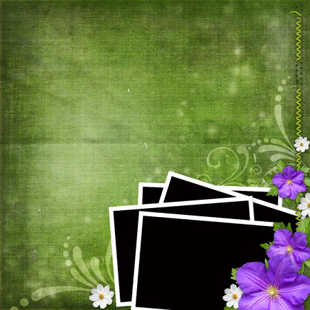 boarder: frame for  photos over green shabby background with violet and white flowers
