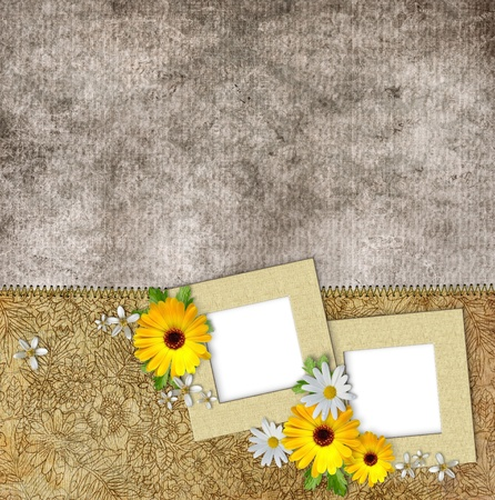 album photo:  frames and flowers on vintage background