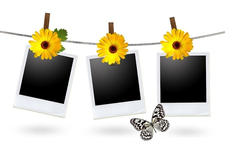 hanging flowers: blank photo frames on a clothesline