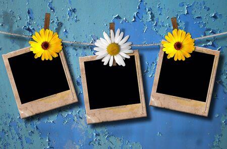 blank photo: blank photo frames on a clothesline