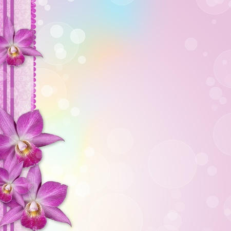 Beautiful Orchid border  photo